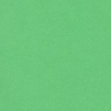 11 色上質 若竹