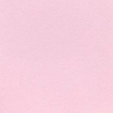 24色上質 コスモス